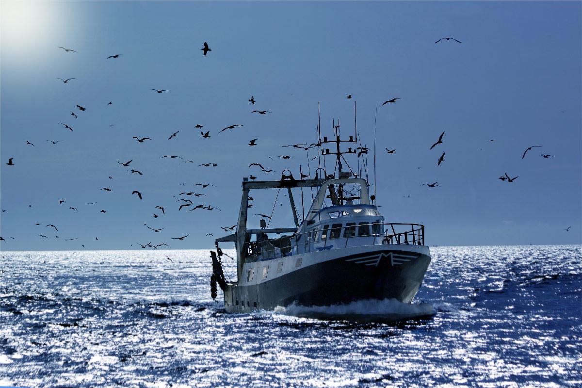Bateau de pêche en mer Mareyage Hennequin, produits de qualité sur toute la côte Atlantique