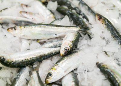 Sardine Mareyage Hennequin - commerçant des produits de la mer sur la côte atlantique