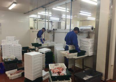 Préparation du poisson emballage du poisson mareyage hennequin dans les ateliers Les Sables d'Olonne en Vendée